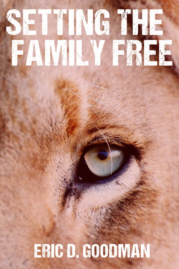 STFF Cover V6 Setting The Family Free